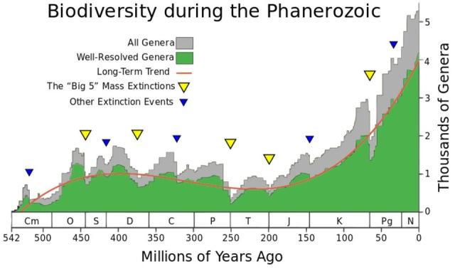 show_phanerozoic_biodiversity